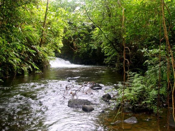 river-142311_1280