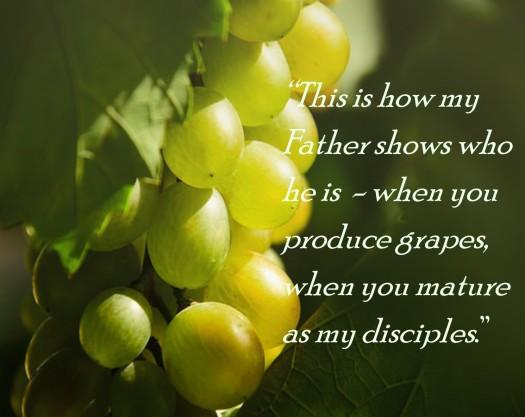 grape-verse3