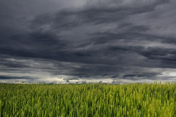 clouds-194840_1920
