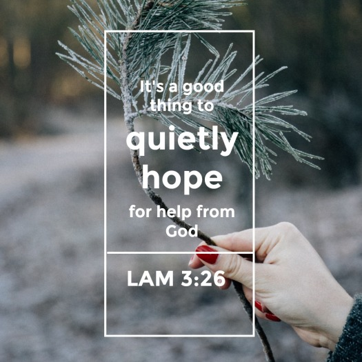 quietly hope